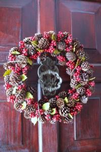 2008 Christmas front door wreath