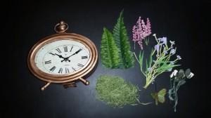 Altered clock - supplies