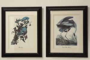 Wildlife prints 2