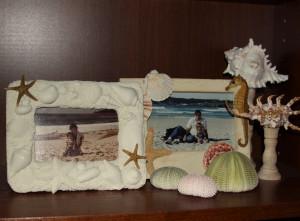 Beach bookshelf 4