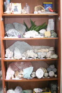 Rock Shelf 2
