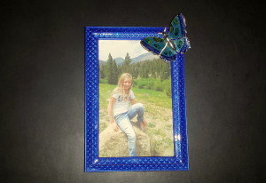 Framed Butterfly pin