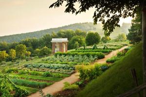 Monticello - gardens