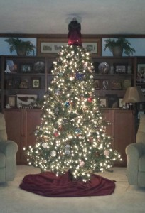 Christmas 2014 - Christmas tree