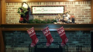 Christmas 2014 - fireplace mantel