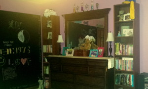 2014 Cassie bedroom 2