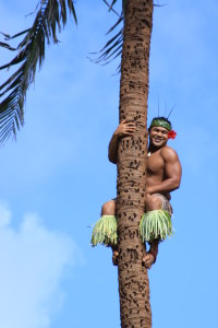 Samoa - tree climber