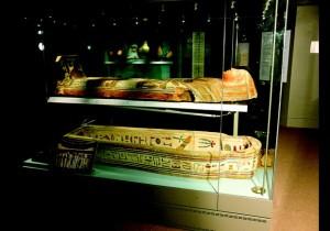 Egyptian Exhibit 1