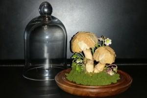 Mushrooms under glass - finished 1