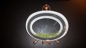 Altered clock - moss